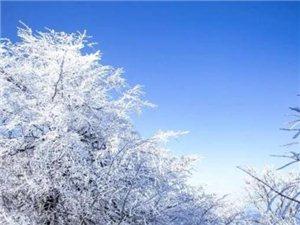 三月,汉中这些地方迎来降雪