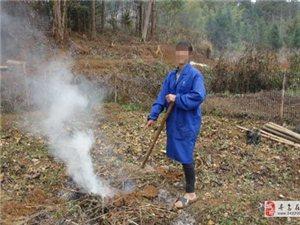 寻乌查处一起违规野外用火案,给予警告并处罚款,森林防火,人人有责!
