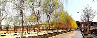 行走在画里―春光肆意的山阳城