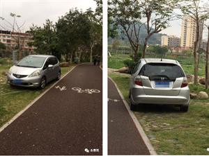 网友说事丨永春又有人将车开进了湿地公园!园内公共设施被破坏……