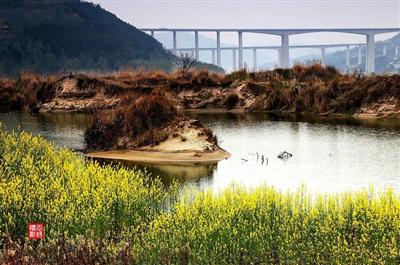 苍溪梨仙湖湿地公园