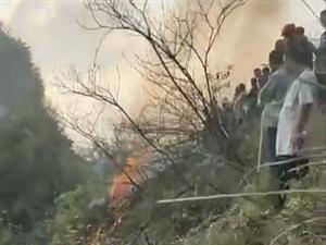 上百人�⑴c到了�浠鹦�又校��t沙村附近野外起火