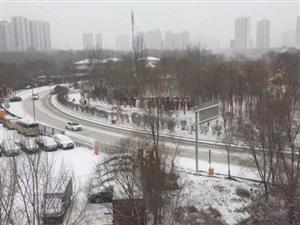 多地有大雪、暴雪...青海清明�假期天�忸A�螅�