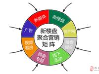 """徽县""""5G移动互联网+聚合营销""""新楼盘项目今天开始启动"""