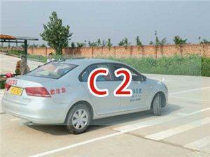 车型:C2
