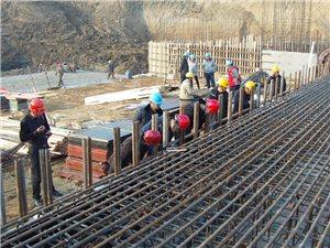 南京溧水中山河闸除险加固工程