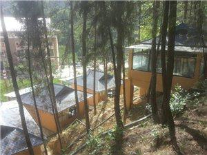 森林��屋