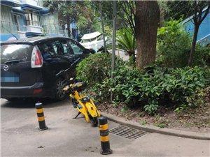 【曝光】富顺共享电单车不文明现象渐显!你怎么看?
