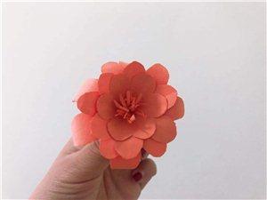 和����做一朵小花送�o最好的朋友