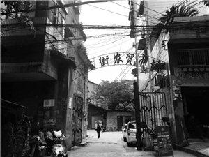 富顺后街里的小巷,是否也藏着你的记忆?