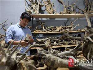 """博兴县80后民间木雕艺人,用传统刻刀雕出现代""""金蝉"""""""