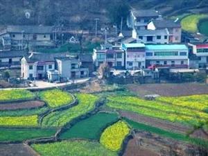 很多快3赔钱了_黑龙江快三app软件主页-彩经_彩喜欢顺人不在农村住了,为什么还要在老家盖一栋新房?
