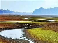 """湖口网红景点再现新疆""""巴音布鲁克"""",美的让人醉了!"""