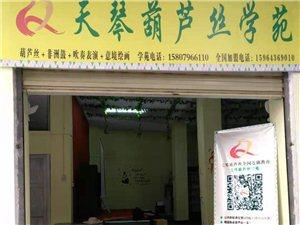 免单节商家——天琴葫芦丝,免费4次葫芦丝课程