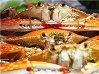 【活蟹】3-4.5两舟山梭子蟹,4斤仅需99元!