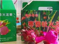 峡江红心火龙果采摘原价105元粉丝福利价59.9元(7斤装)