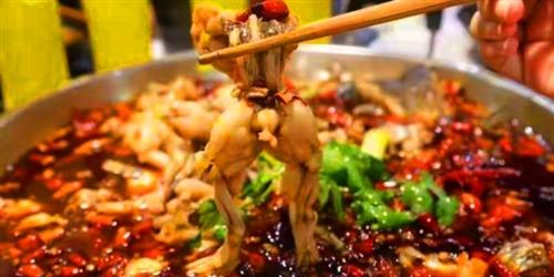 【沅陵美食逮起来】只要49.9元抢购原价120元美蛙鱼头套餐!
