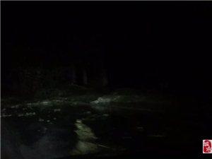 又是刮风又是下雨的,这树全都倒了!出门注意了