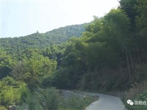 固始�@��藏在森林里的村�f,�名全��,�B身又�B心!