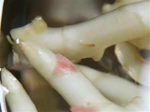 天热不想吃饭这个泡生姜拿来下白稀饭吃超爽!!