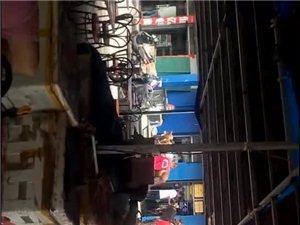 冀州迎宾市场大台子上,好多马,又想骑的吗?快去吧