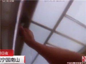 """【0802】南山一居民家出现""""桑树根"""",蜀黍深夜出警抓蛇"""