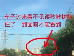 大棋路与高铁大道交汇处,红绿灯视线被遮挡