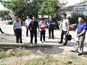 杨龙调研指导创城工作并主持召开紫南社区创城联合党委会议