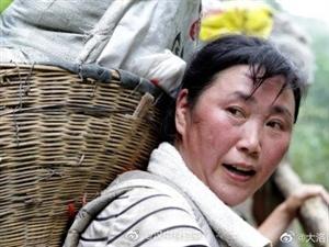 48岁女挑山工深山扛水泥给儿子攒彩礼:当年欠他的现在还