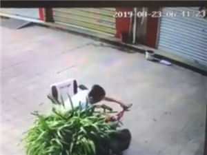滨州两老人偷走商户门前盆栽,