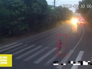 泸州一老人斑马线被撞飞后……若车祸能暂停……