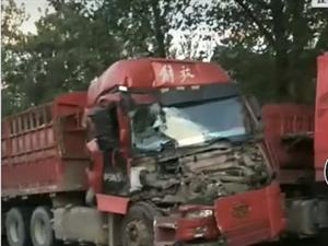 乐平到万年的国道上一辆货车车头都撞碎了