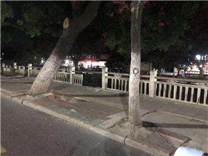 危险!南门河边栏杆破损!前去散步的市民要注意安全!