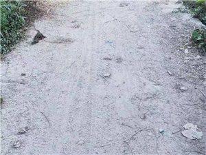 悲哀!这就是夏店镇三口塘村的村村通水泥路?