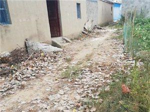 霍邱县宋店乡南北市村大圩队的村庄的路何时能修?