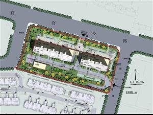 宜官路南侧D2地块总平方案批前公示