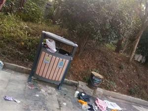 垃圾桶外竟散落一地的垃圾,是人�檫�是...?