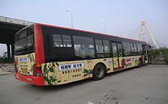 注意了!汉中3路公交车改线,不再经过将坛西路