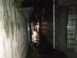 昨夜自�硭�公司��修好了�幔康屡d��家巷水管爆了�q水。。