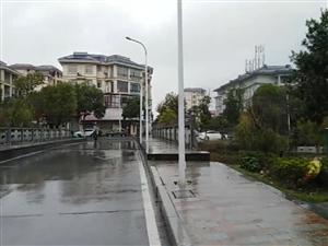 真是醉了,下大雨�@��路口小�能不能慢�c�_?