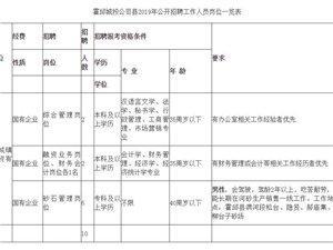 2019年霍邱城镇建设投资有限公司公开招聘工作人员公告