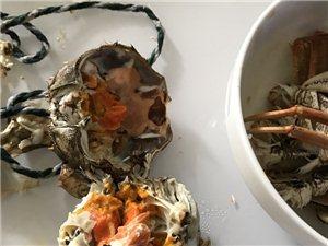 太�的下�觯何顼�螃蟹吃多了,一口�飧懔税酥唬��F在胃好疼�想吐