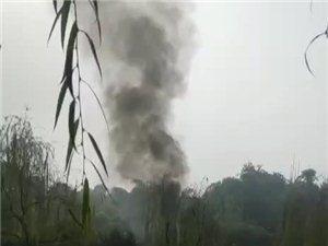 南溪一辆车突然自燃,火势凶猛,烧得只剩架架……