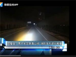 灵璧县:男子失足跌落山间消防多方进行救援