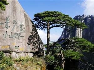 �意游�S山