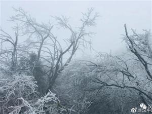 汉中这么冷,原来多地又下雪了!