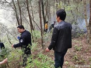 祭祖引发森林火灾,南郑警民联手3个多小时成功扑灭
