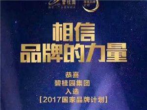 2016年底,碧桂�@成功入�x2017央�
