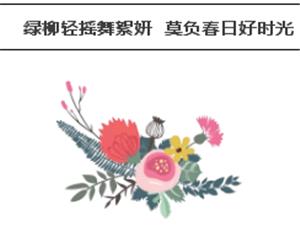 湾美风筝嘉年华 | 春风十里,不如这里!