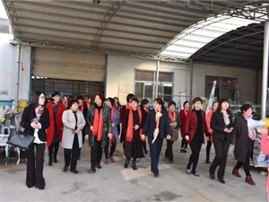 莒南县女企业家协会到费县参观考察(2017.3.10)